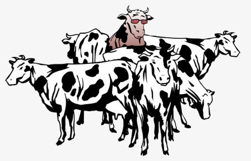 Free Cows Clip Art With No Background Page 5 Clipartkey