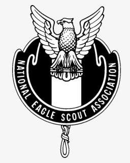 Connecticut Yankee Council Central Florida Council Eagle Scout Boy Scouts  of America Scouting, others transparent background PNG clipart | HiClipart