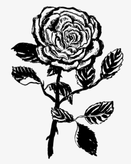Clipart rose black and white, Clipart rose black and white Transparent FREE  for download on WebStockReview 2020