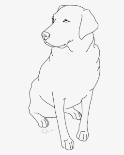 Labrador Coloring Page Ancient Dog Breeds Free Transparent Clipart Clipartkey