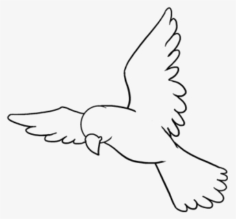 How To Draw A Bird Easy Step Drawing Free Transparent Clipart Clipartkey
