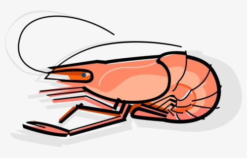 Free Cooked Fish Clip Art With No Background Clipartkey