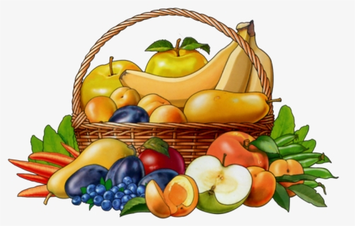 Basket Of Fruits Coloring Pages With Fruit Basket Coloring Page | Fruit  coloring pages, Basket drawing, Fruit basket drawing