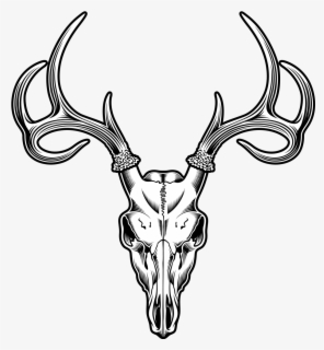 Reindeer Cartoon clipart - Deer, Reindeer, Head, transparent clip art