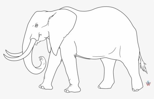 Simple Elephant Stencil