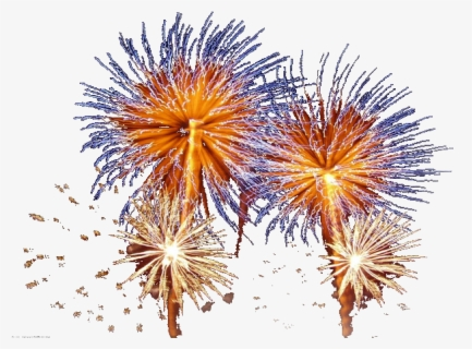 Free firework display Images, Pictures, and Royalty-Free Stock Photos -  FreeImages.com