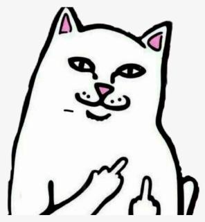 cat clipart ripndip gambar kucing jari tengah free transparent clipart clipartkey cat clipart ripndip gambar kucing