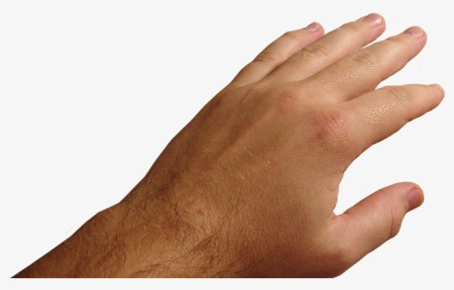 Hands Png Free Images Pictures Download Hand Pov Hand Png Free Transparent Clipart Clipartkey Discover and download free hand png images on pngitem. pictures download hand pov hand png