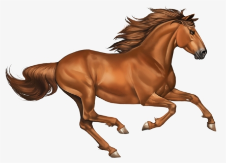 Horse Chestnut Leaf | Horse chestnut leaves, Horse chestnut trees, Chestnut  horse