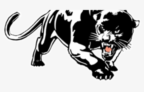 Jaguar And Black Panther Drawing Free Transparent Clipart Clipartkey