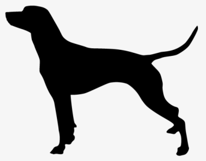 Free Smooth Clip Art with No Background