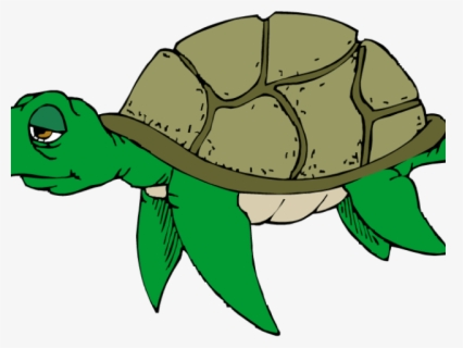 Free Cute Turtle Clip Art With No Background Clipartkey
