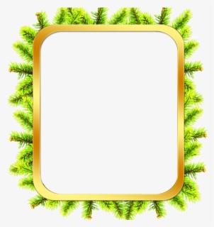 Free Microsoft Publisher Border Templates Download Tree Frame