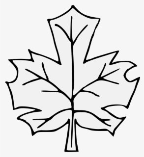Free Leaf Black And White Clip Art With No Background Clipartkey