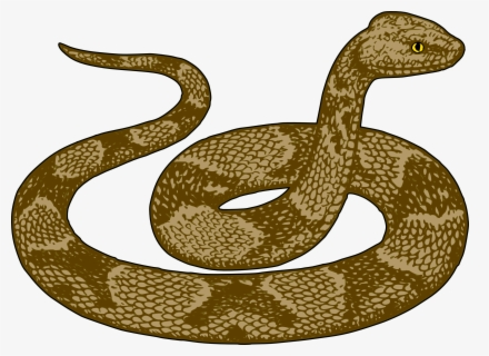Free Snake Clip Art with No Background - ClipartKey