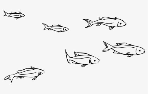 Free School Of Fish Clip Art With No Background Clipartkey