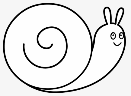 Free Snail Black And White Clip Art With No Background Clipartkey