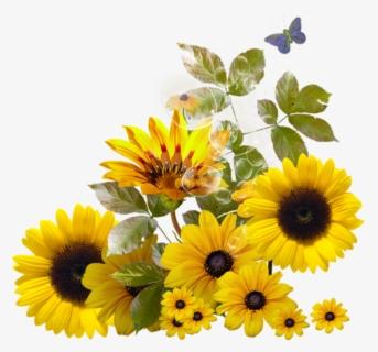 Free Sunflower Corner Border Clip Art with No Background ... (343 x 320 Pixel)
