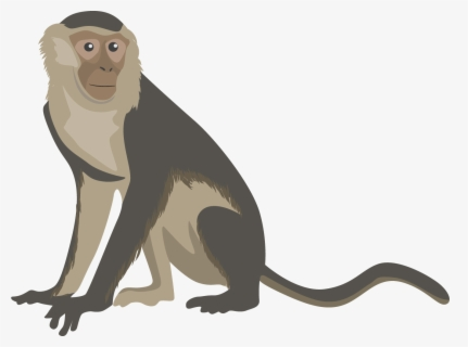 Free Free Monkey Clip Art With No Background Clipartkey