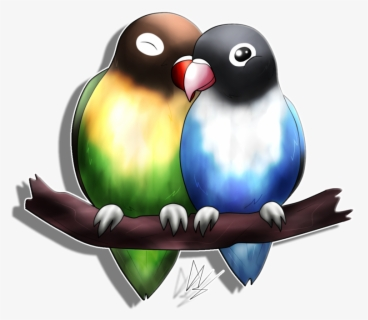 free lovebird clip art with no background clipartkey free lovebird clip art with no