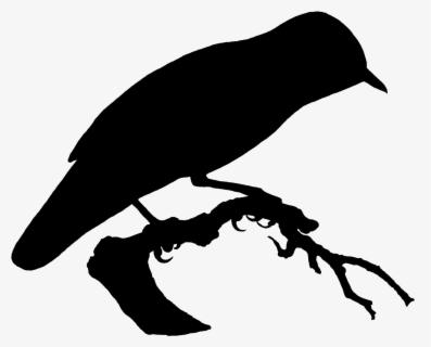 Burung Terbang Di Pantai Hitam Putih Free Transparent Clipart Clipartkey