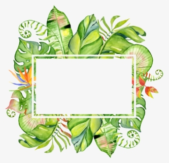 Free Tropical Leaves Clip Art With No Background Clipartkey Forest tropical leaves and leaf plant palm frame, palm, tropical, vector png and vector with transparent background for free download. free tropical leaves clip art with no