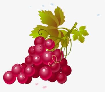 White Wine Vine Grape Clip Art, PNG, 1000x960px, White Wine, Area, Artwork,  Black, Black And White