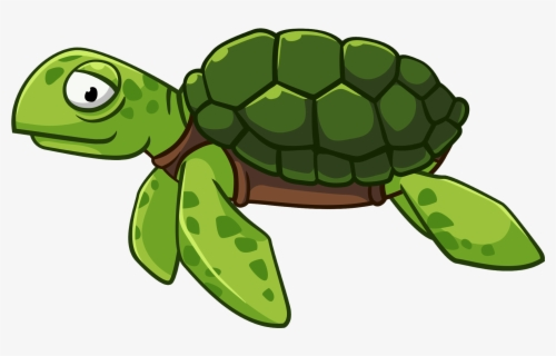 Cartoon Transparent Turtle Png Free Transparent Clipart Clipartkey